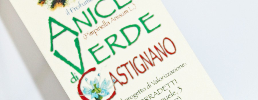 anice verde Castignano