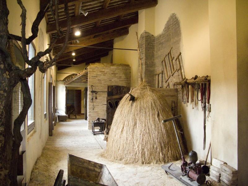 museo montefiore dell'aso