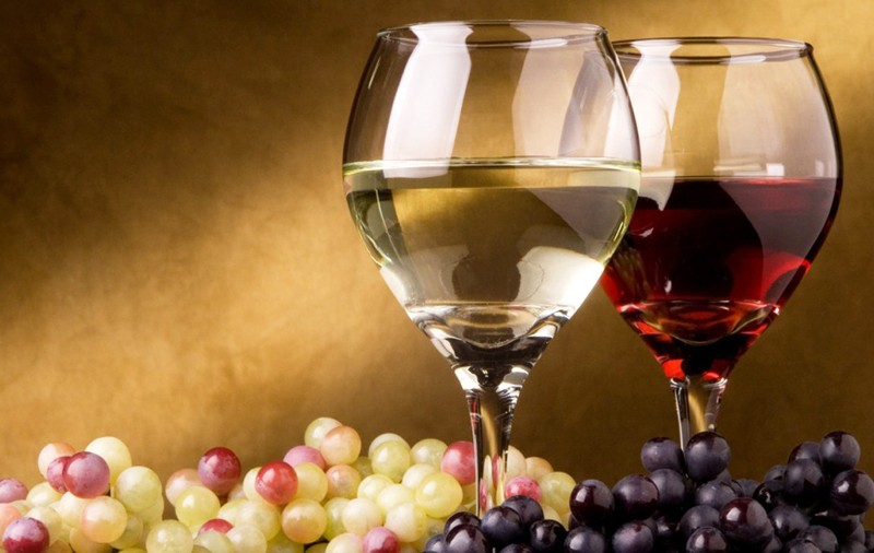 vino offida